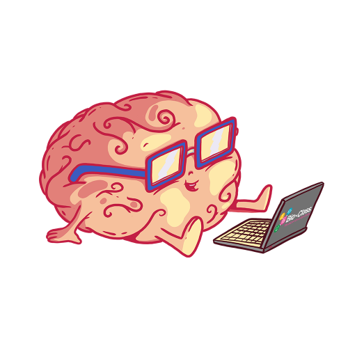 crebro de bioclass